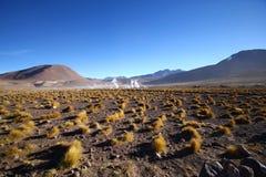 Geyser di Taito nel deserto di Atacama fotografia stock libera da diritti