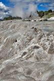 Geyser di Whakarewarewa al parco termico di Te Puia, Nuova Zelanda Immagini Stock Libere da Diritti