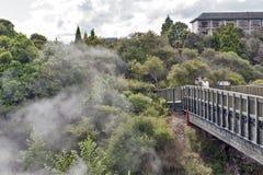 Geyser di Whakarewarewa al parco termico di Te Puia, Nuova Zelanda Fotografia Stock
