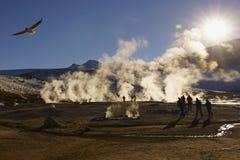 Geyser El Tatio, San Pedro de Atacama, Chile arkivfoto