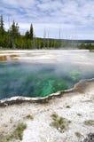 Geyser em Yellowstone Foto de Stock Royalty Free