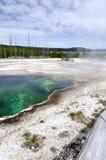 Geyser em Yellowstone Imagem de Stock