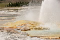 Geyser erupting in Yellowstone National Park stock photo
