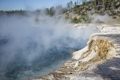 Geyser excelsior Photo stock
