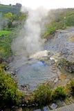 Geyser Furnas, on Sao Miguel Island, Azores Royalty Free Stock Image