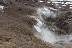 Geyser geothermal area Sol de Manana in Eduardo Avaroa Nationa. L Reserve - Altiplano, Bolivia, South America Stock Photo