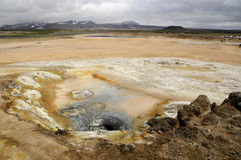 Geyser in Geothermal area Stock Photography
