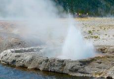 Geyser gettante che si sfoga al parco nazionale di Yellowstone Fotografia Stock Libera da Diritti