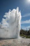 Geyser grande, parque nacional de Yellowstone Fotos de Stock Royalty Free