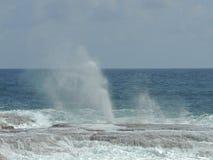 Geyser i Barbados Arkivbilder