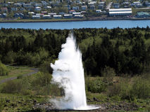 Geyser ,Iceland Royalty Free Stock Images