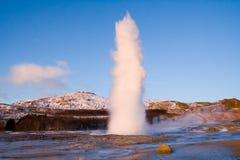 geyser iceland Arkivfoto
