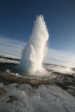 Geyser in Iceland. Geyser shooting into the sky on a clear spring day in Iceland along the Golden Circle Stock Photography