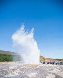 Geyser in iceland Stock Photo