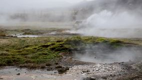 Geyser in Iceland stock video footage