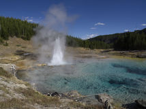 Geyser impérial image stock