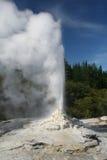 geyser knox κυρία Στοκ Φωτογραφία