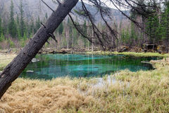 Geyser lake in Altai mountains Stock Image