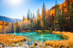 Geyser lake with turquoise water in autumn Altai mountains, Siberia, Russia