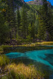 Geyser mountain lake with blue clay. Attraction in Altai, Russia Royalty Free Stock Photography