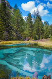 Geyser mountain lake with blue clay. Attraction in Altai, Russia Stock Image