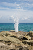 Geyser near the ocean Stock Photography