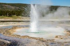 Geyser pequeno, parque nacional de Yellowstone Imagem de Stock Royalty Free
