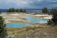 Geyser pools at Yellowstone National Park Royalty Free Stock Photos