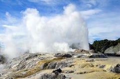 geyser rotorua puia te Στοκ Εικόνες