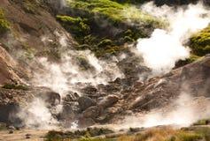 Geyser su un vulcano Immagine Stock Libera da Diritti