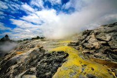 Geyser at Te Puia New Zealand Royalty Free Stock Photography