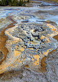 Geyser  texture Yellowstone Stock Photo