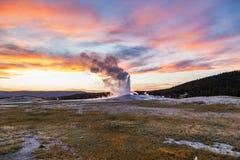 Geyser velho e fiel que entra em erupção no parque nacional de Yellowstone