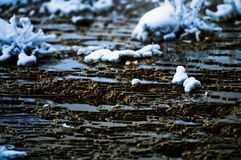Geyser in Winter Stock Photography