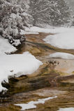 Geyser in Winter Stock Images