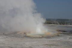 geyser yellowstone Fotografering för Bildbyråer