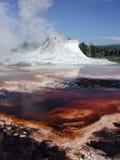 geyser yellowstone Arkivfoto