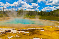 geyser yellowstone Royaltyfria Foton