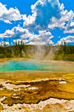 geyser yellowstone Royaltyfri Bild