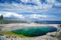 Geyser at Yellowstone Stock Photography
