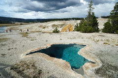 Geyser at Yellowstone Stock Photos