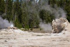 geyser yellowstone Royaltyfri Fotografi