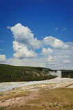 geyser yellowstone Royaltyfri Foto