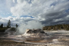 Geyser in Yellowstone Stock Image