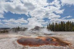 Geyser Yellowstone del castello Immagini Stock Libere da Diritti