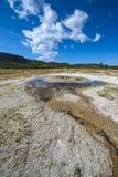 Geyser Yellowstone del gioiello Fotografia Stock