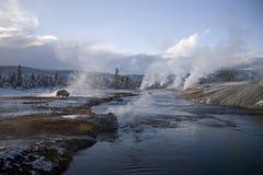 geyser yellowstone för 16 buffel Arkivfoto