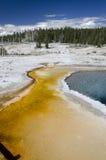 Geyser in Yellowstone Stock Image