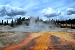 Geyser in Yellowstone National Park Stock Images