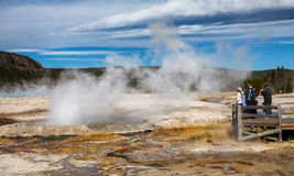 Geyser Yellowstone National Park Stock Images